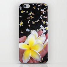 Frangipani Explosion! iPhone & iPod Skin