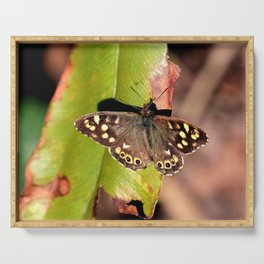 Speckled Wood Butterfly Serving Tray