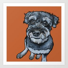 Frankie the Schnoodle Art Print