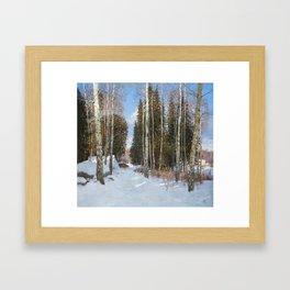 Finnish Farm Framed Art Print