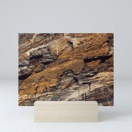 Rocky Mountain Texture Mini Art Print