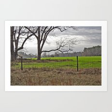 Green Pastures in Wintertime Art Print