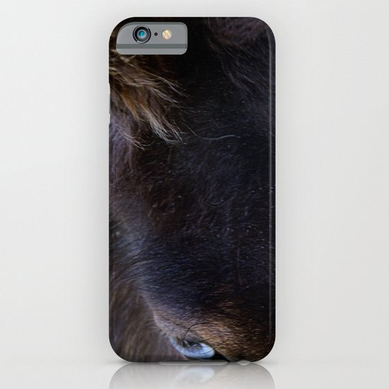 Old Blue Eyes iPhone & iPod Case
