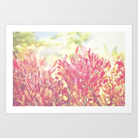 Burst of Red Art Print