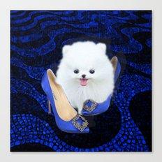 Blue Manolos Canvas Print