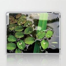 Mini Water Lilies and Water Bug Laptop & iPad Skin