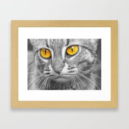 RUSTY SPOTTED CAT Framed Art Print