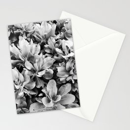 Natural Background 88 Stationery Cards