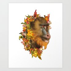 Baboon Rainbows Art Print