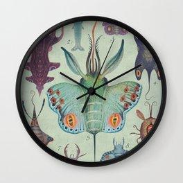 Cephalopodoptera Tab. I Wall Clock