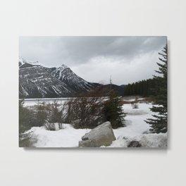 Cold Beauty 6 Metal Print