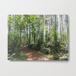 Bloedel Reserve Walking Path Metal Print