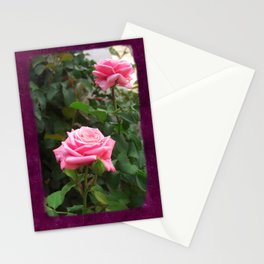 Pink Roses in Anzures 5  Blank P8F0 Stationery Cards