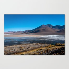 Flamingos on Laguna Colorada Surrounded by Volcanoes Canvas Print