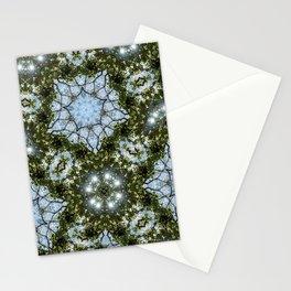 Winter Magnolia Sun Stationery Cards