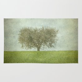The Lone Olive Tree Rug