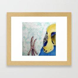 Parakeet Hello Framed Art Print