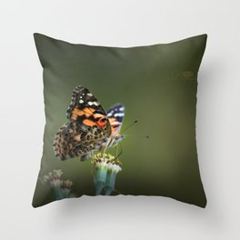 An American Lady Buttefly Throw Pillow