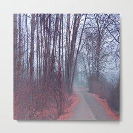 Autumn Walk Through the Park Metal Print