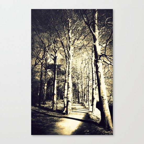 Awakening Light  Canvas Print