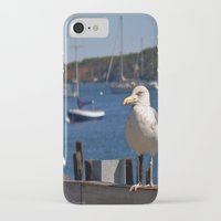maine iPhone & iPod Cases featuring Maine Local by Catherine1970