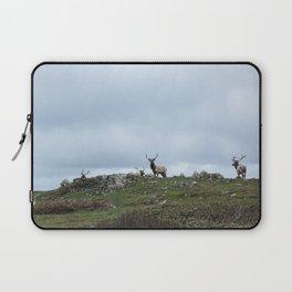 Reindeer (Caribou)  Laptop Sleeve