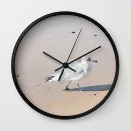 Juvenile Herring Gull Wall Clock