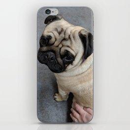 Pug Hug iPhone Skin