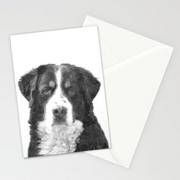 Black and White Bernese Mountain Dog Stationery Cards