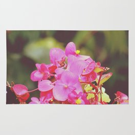 vintage pink flowers. Rug