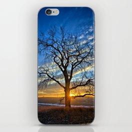 Sunburst Cottonwood 2 iPhone Skin