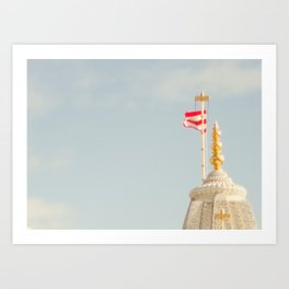 Just the flag Art Print