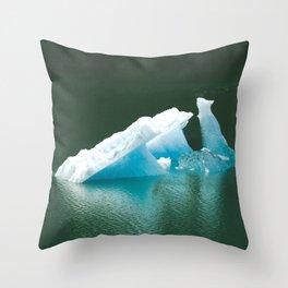 Blue Ice Swan Floating in Alaskan Waters Throw Pillow