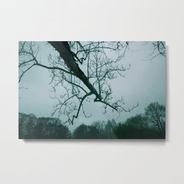 Gray Skies Metal Print