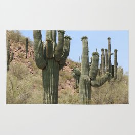 A Cacti in the Desert Rug