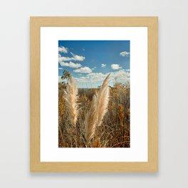 Autumn Sea Oats Framed Art Print