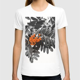 Red Rowan Berries In Black And White Background #decor #society6 T-shirt