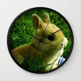The Egg Keeper Wall Clock