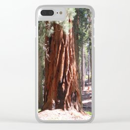 Redwood Clear iPhone Case