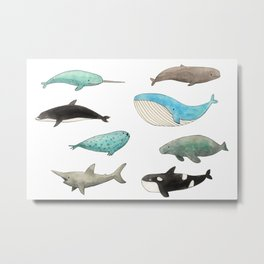 Marine animals Metal Print