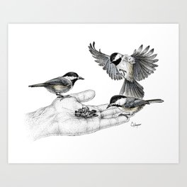 Chickadees eating from hand Art Print