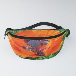 Wild Red Poppy Photograph Fanny Pack