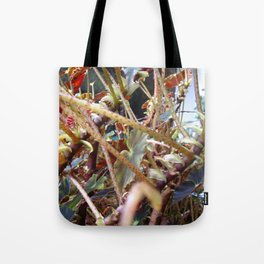 Dragon Fight    [PLANTS]   [VINES] Tote Bag