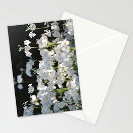 Naivety Stationery Cards