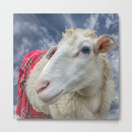 Beautiful sheep Metal Print