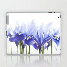 Bue Iris 2 Laptop & iPad Skin