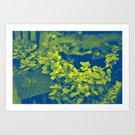 Pop Art Plants Art Print
