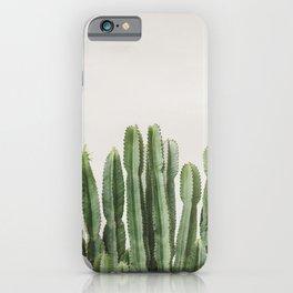 Cactus Bunch iPhone Case