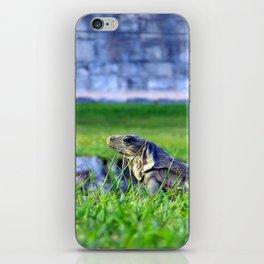Mayan Iguana iPhone Skin
