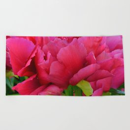 Dark Pink Tree Peony by Teresa Thompson Beach Towel